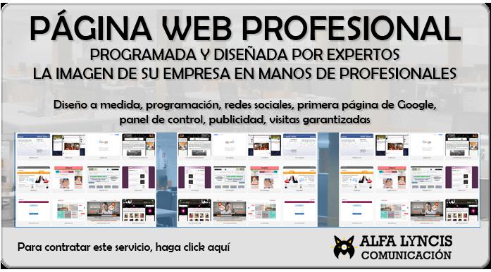 pagina web profesional 2018, pagina web alicante, madrid, cuenca, caceres