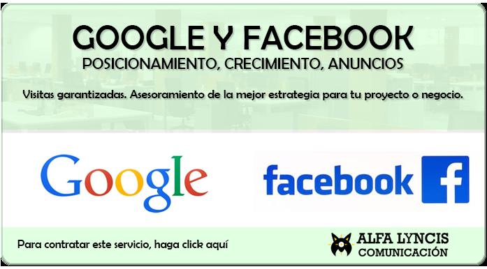Publicidad en Google y Facebook